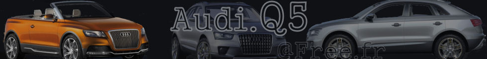 Logo de http://audi.q5.free.fr/